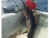 Eric Vogt swordfish